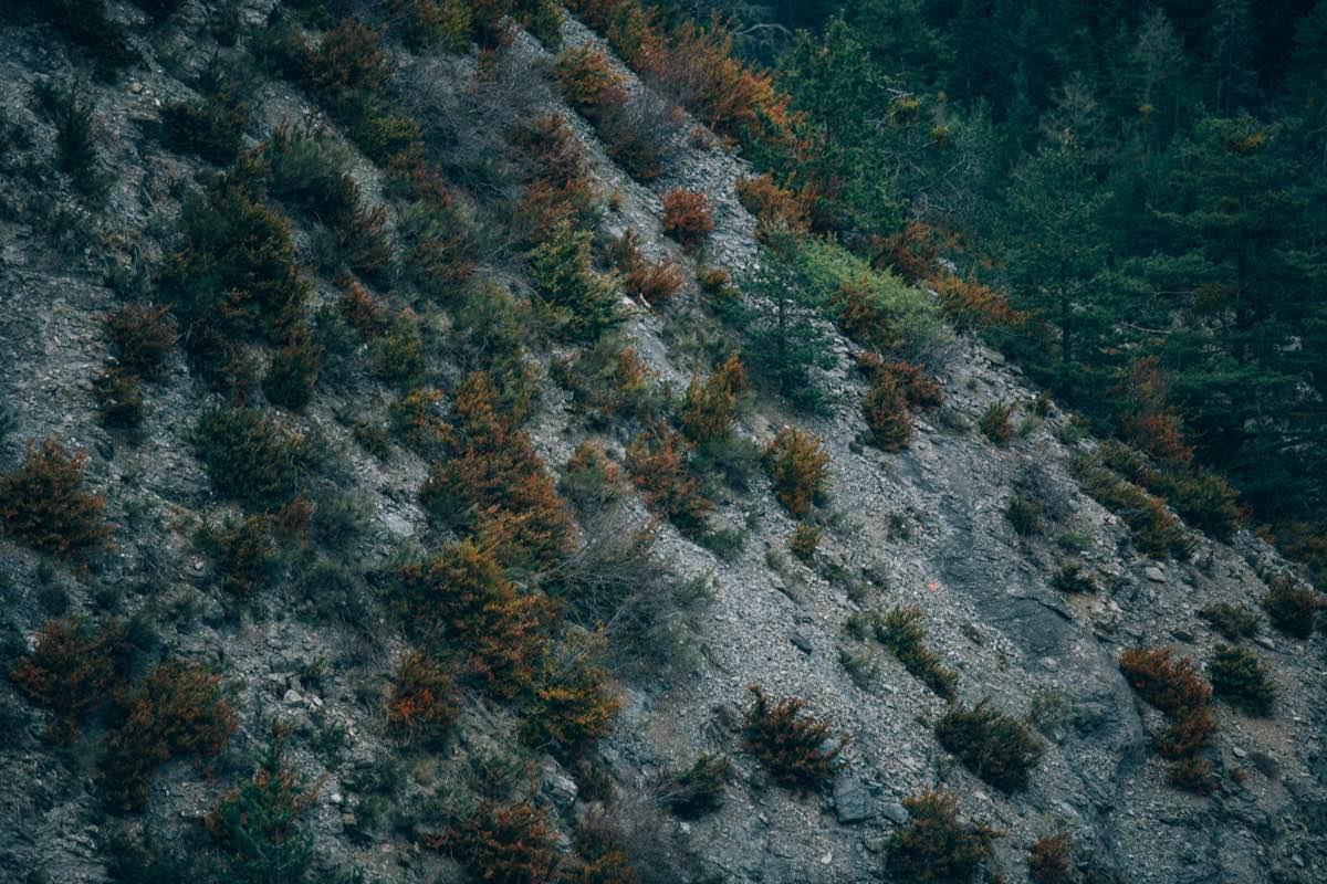 une-mariee-rousse-un-mariage-en-montagne-ingrid-lepan-photographe-1